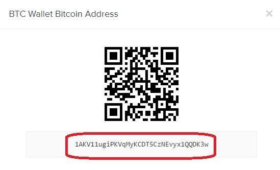bitcoin stave